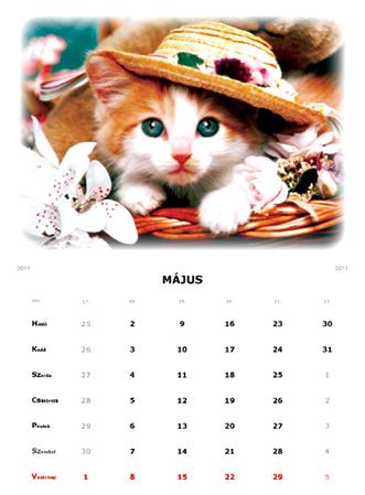 naptár saját fotóval COPYMAX | FÉNYKÉPES FALI és ASZTALI NAPTÁR | 386 2314 | Fénymásoló  naptár saját fotóval